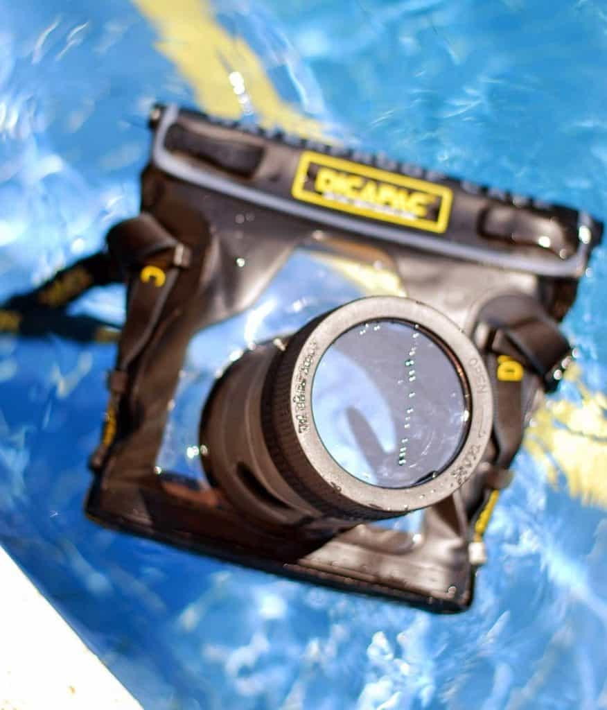 Dicapac Waterproof Camera Case Review, A Lily Love Affair