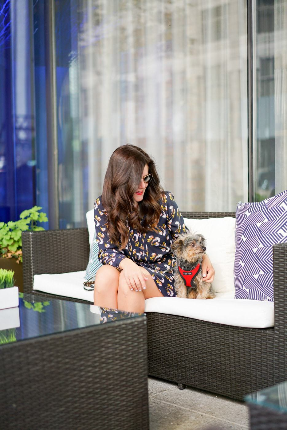 Radisson Blu Aqua, Radisson Blu Aqua Review, Chicago Pet-friendly Hotels, A Lily Love Affair, Chicago Blogger