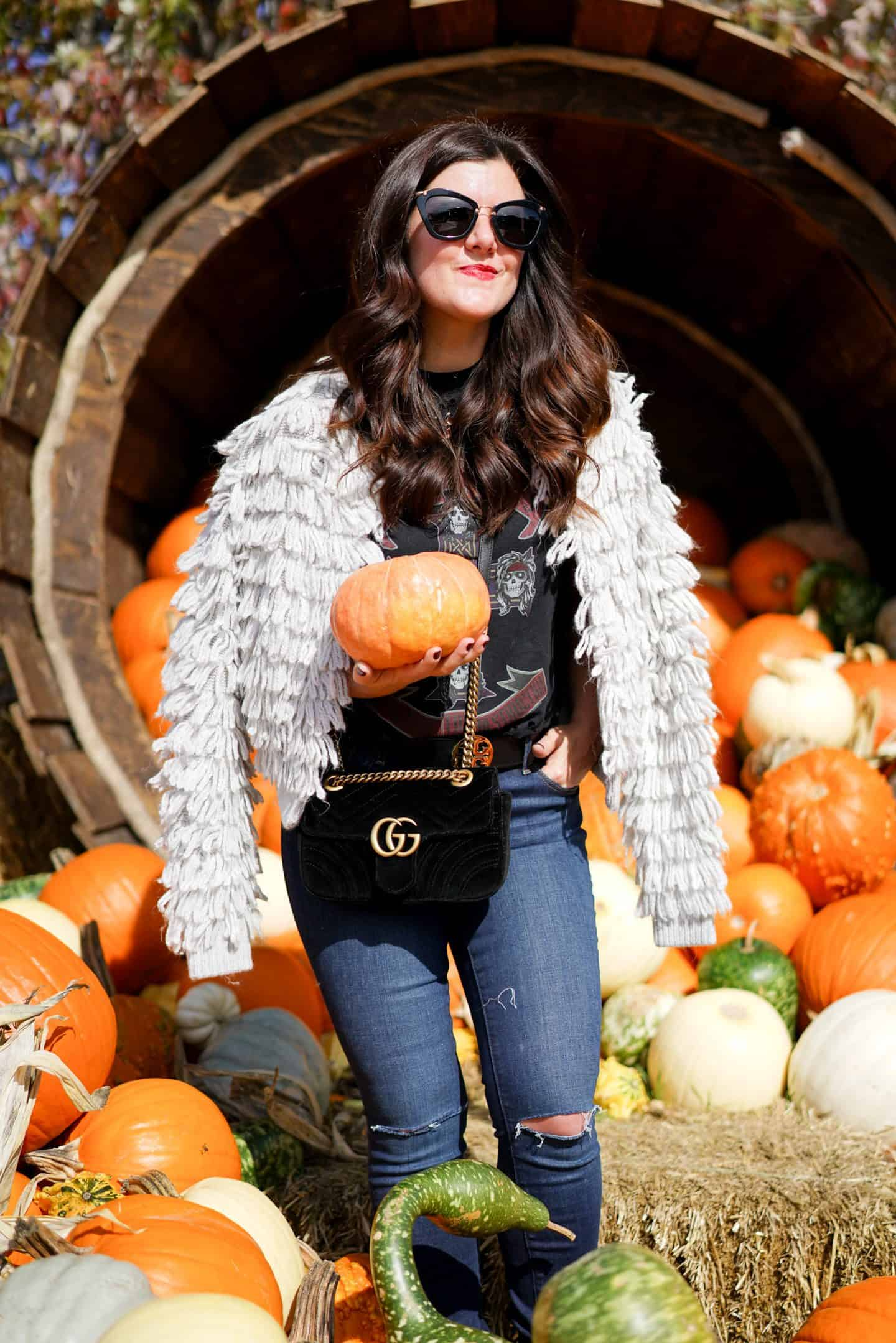 Grand Geneva Resort, Gap Loop Stitch Cardigan, Ann Taylor Skinny Jeans, Gucci Bag, Chicago Blogger, Pumpkin Patch, A Lily Love Affair