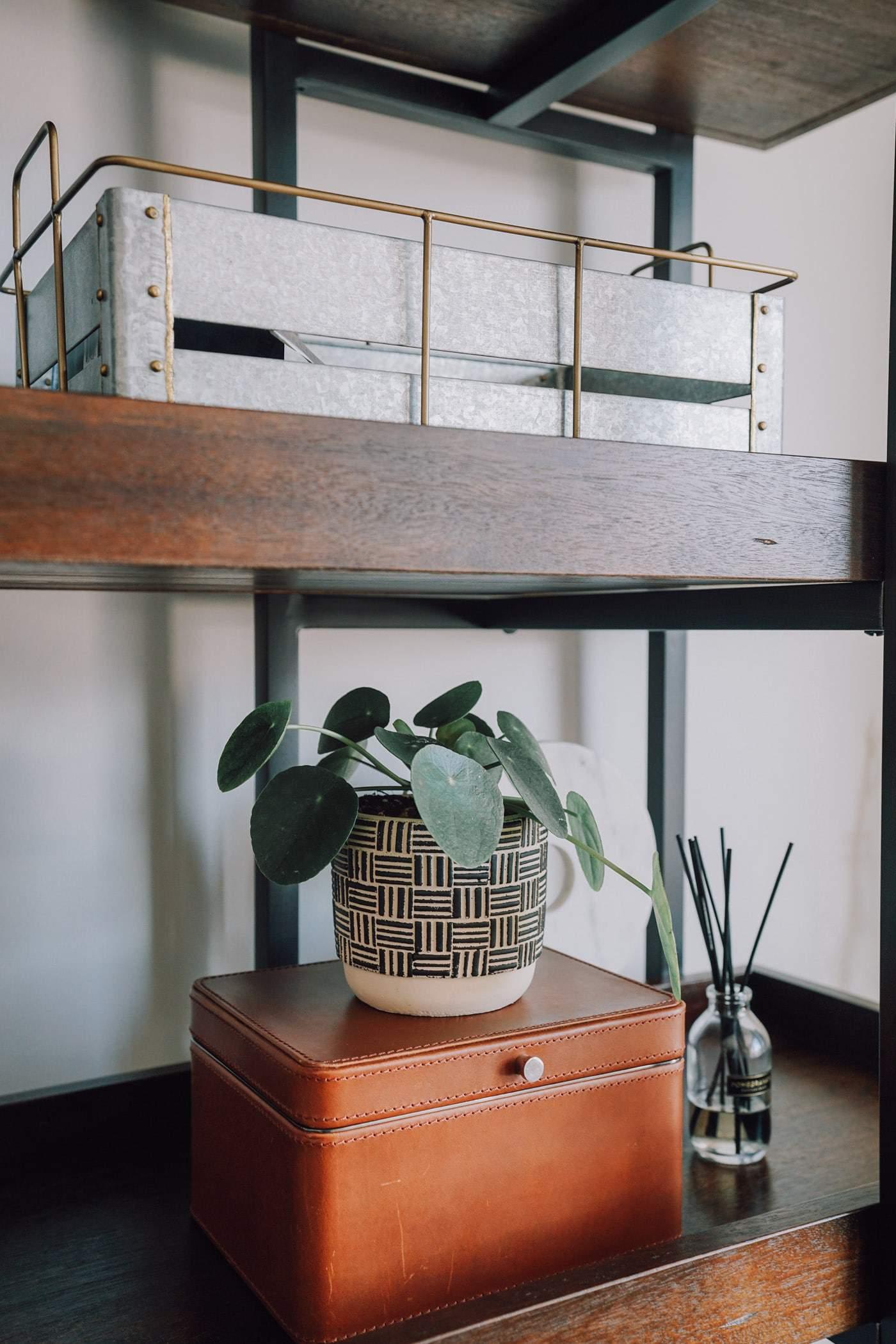 Places to Buy Indoor Plants Online, indoor plants, indoor planters, A Lily Love Affair