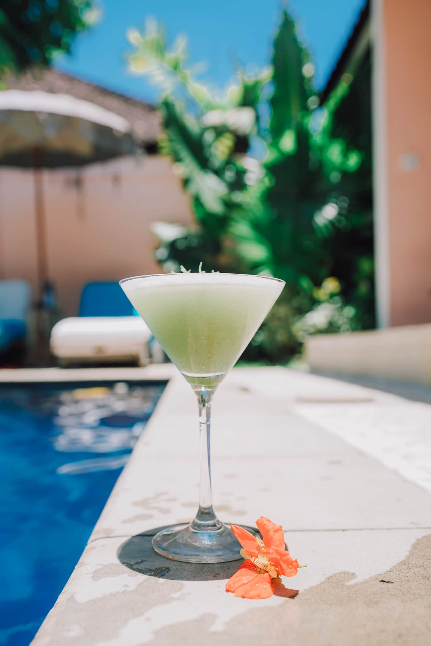 Looking for the best place to stay in Canggu? Looking for great Bali food and an amazing yoga retreat in Bali? Look no further than The Chillhouse Bali and Cassava Poolside café | Travel Bali | Travel Canggu #travelbali #bali #thechillhouse #yogaretreat #baliyoga