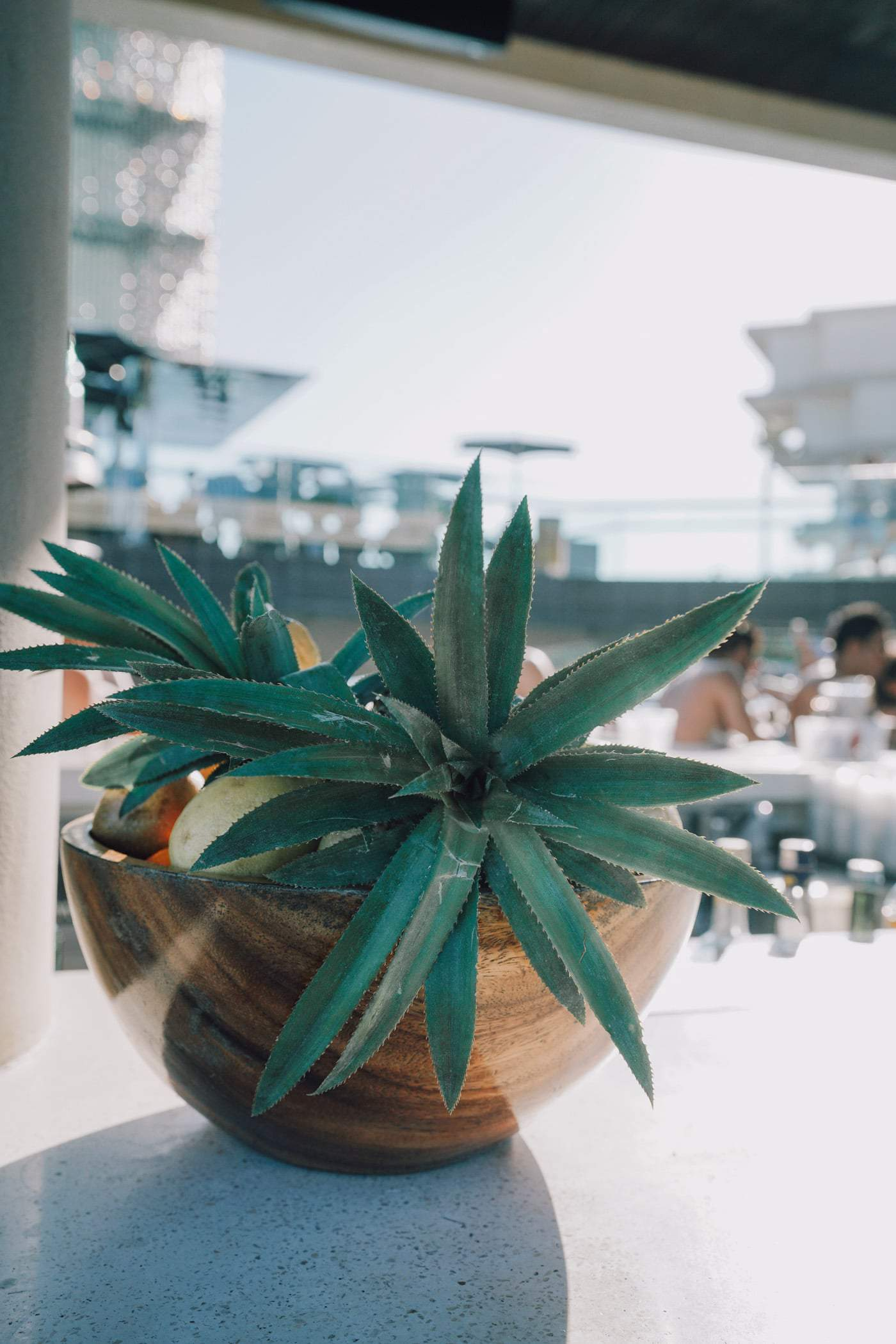 Looking for the best Bali beach clubs? We have you covered! Today, we're giving an honest review of 5 of Bali most notable beach clubs across the island. Including Omnia Beach Club in Uluwatu Bali.