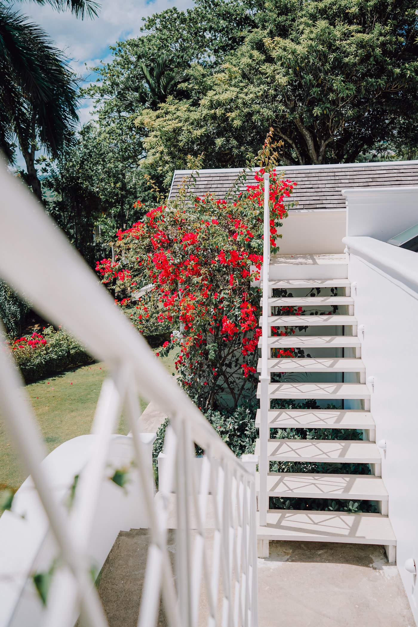 Beautiful flower filled staircase at the Hillside House in Jamaica