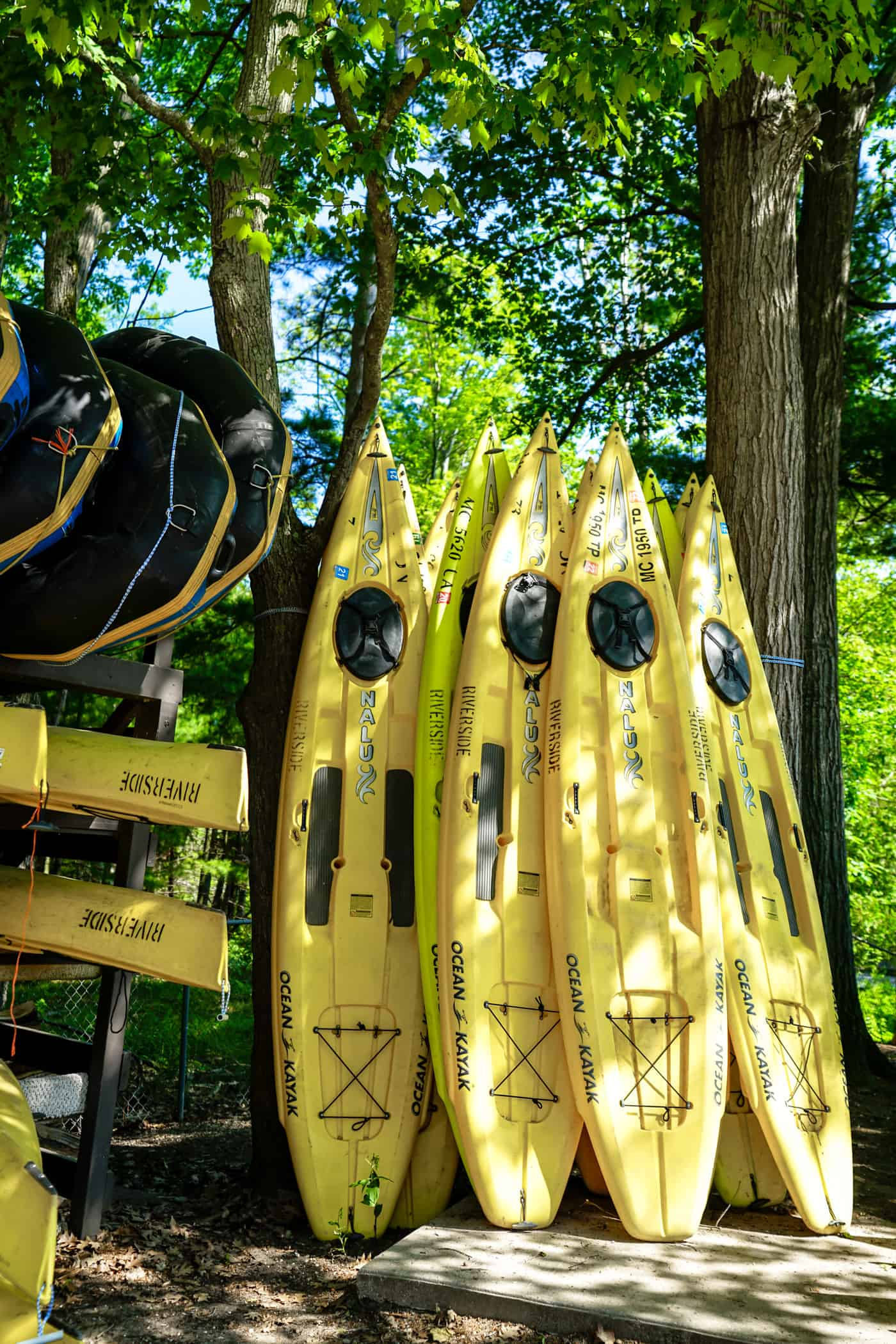 A Lily Love Affair shares downtown Frankfort Michicagn and Riverside Canoe and Kayak Rental