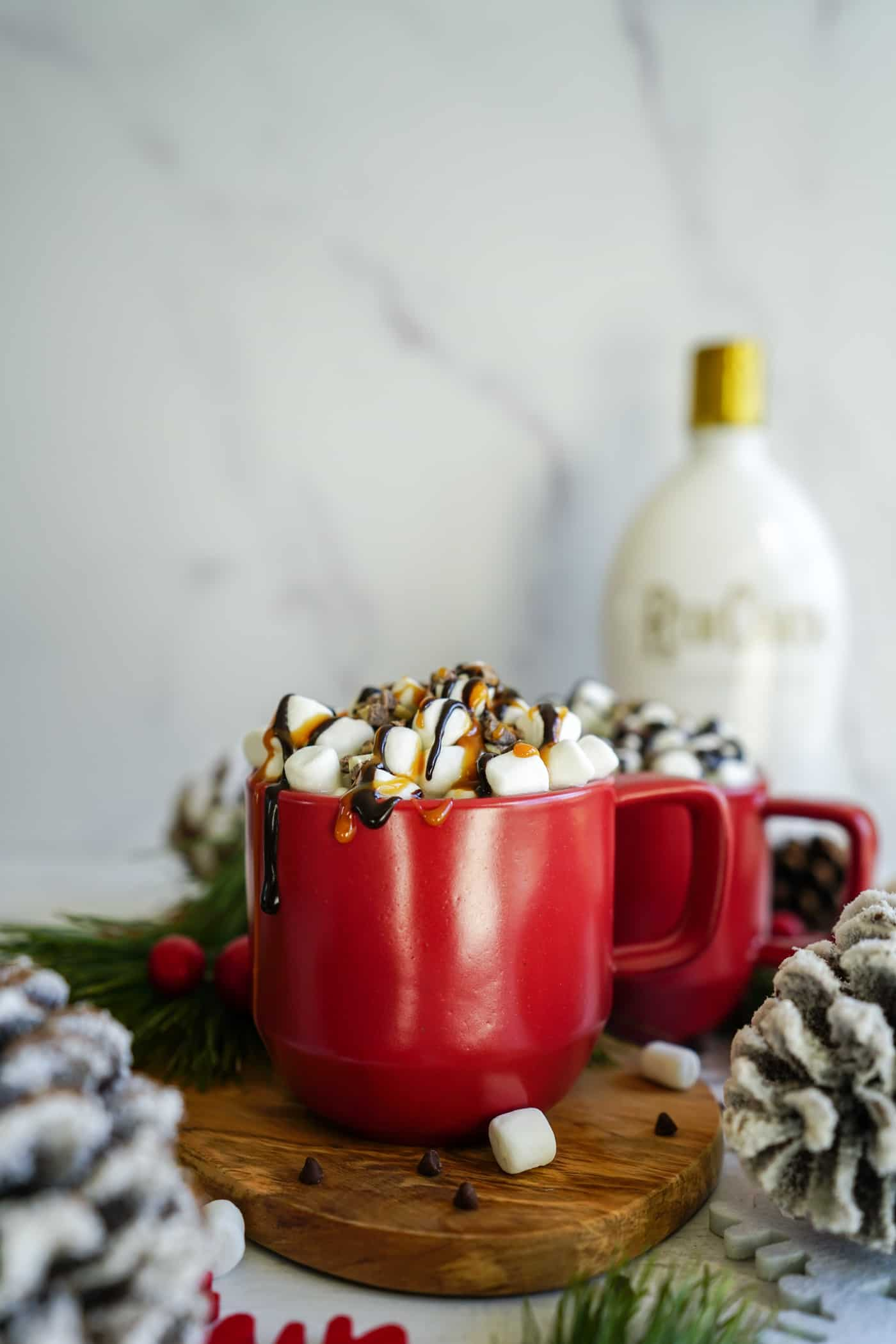 A Lily Love Affair shares an easy recipe for rumchata hot chcololate topped with chocolate sauce